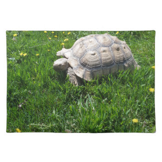 African sulcata tortoise placemat