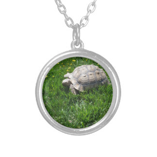 African sulcata tortoise silver plated necklace