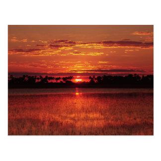 African sunset Botswana postcards
