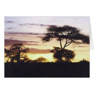 African Sunset Card