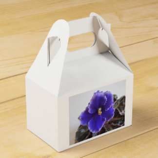 African Violet Blooming Favor Box