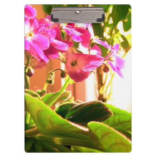 African Violets Clipboard