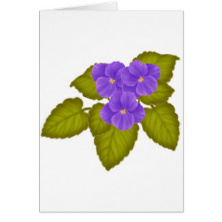 African Violets Purple Card