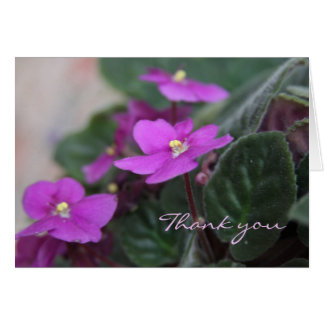 African Violets Thank You Card