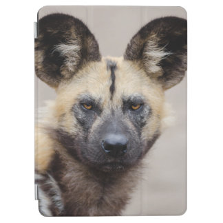 African wild dog iPad air cover