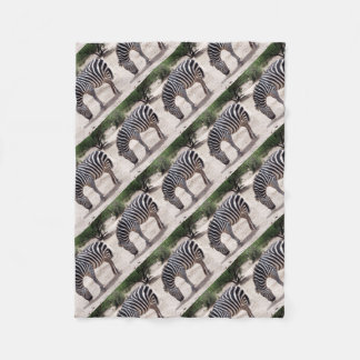 African zebra at the zoo fleece blanket
