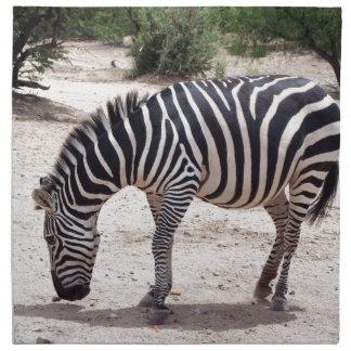 African zebra at the zoo napkin