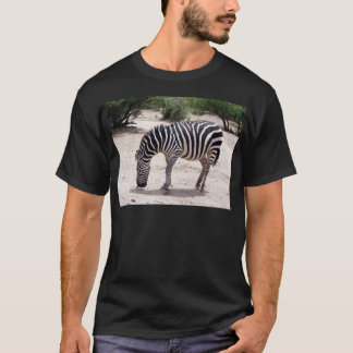 African zebra at the zoo T-Shirt