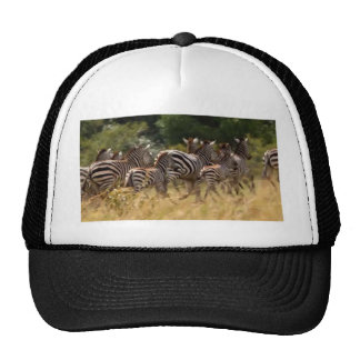 African Zebra cool stuff Hakuna matata Gifts Trucker Hat