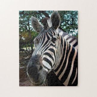African Zebra. Jigsaw Puzzle