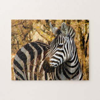 African Zebra Jigsaw Puzzle
