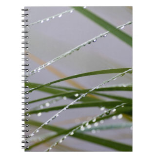 After the Rain Notebook