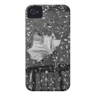 After the Rain Storm iPhone 4 Case-Mate Case