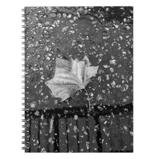 After the Rain Storm Notebook