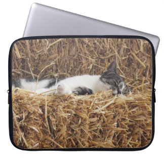 Afternoon Cat Nap Laptop Computer Sleeves