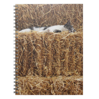 Afternoon Cat Nap Notebook