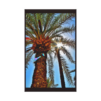 Afternoon Date Tree Canvas Print