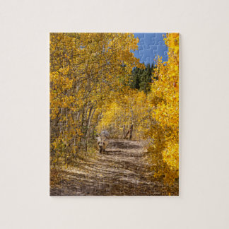 Afternoon Drive Jigsaw Puzzle