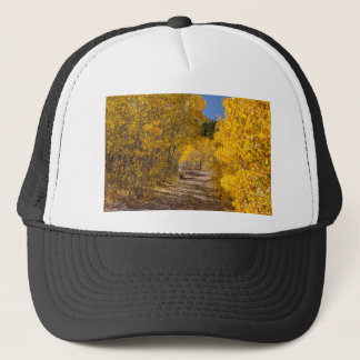 Afternoon Drive Trucker Hat