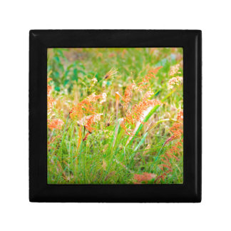 Afternoon Floral Scene Photo Gift Box
