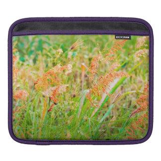 Afternoon Floral Scene Photo iPad Sleeve