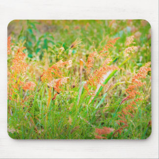 Afternoon Floral Scene Photo Mouse Pad