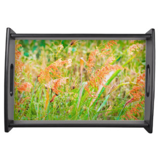 Afternoon Floral Scene Photo Serving Tray