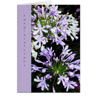 Agapanthus Bloom Card