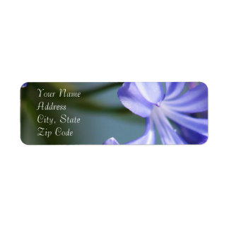 Agapanthus Flower Address Labels