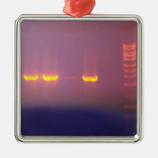 Agarose Gel Electrophoresis Metal Ornament