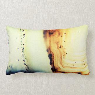 Agate Stone Close-Up Lumbar Pillow