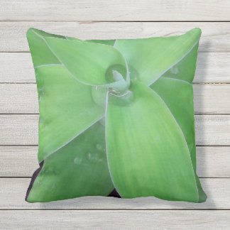 Agave and Raindrops Outdoor Pillow