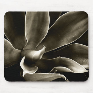 Agave Attenuata in Sepia Mouse Pad