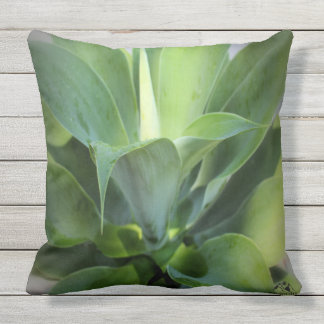 Agave Outdoor Pillow