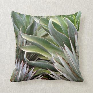 Agave pillow by Debra Lee Baldwin