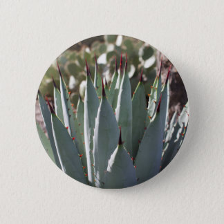 Agave Spikes 2 Inch Round Button