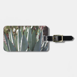 Agave Spikes Luggage Tag