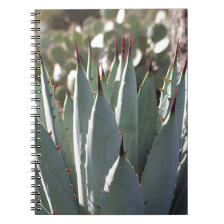 Agave Spikes Notebook