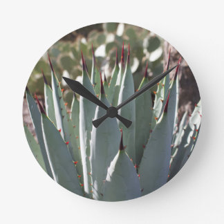 Agave Spikes Round Clock