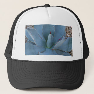 Agave Trucker Hat