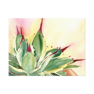Agave Watercolor by Debra Lee Baldwin Canvas Print