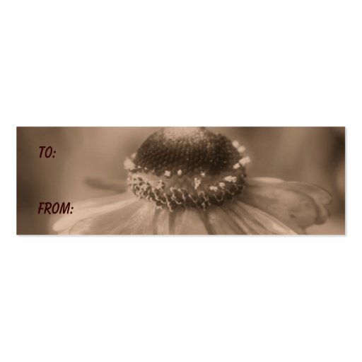 Aged Sepia Zinnia Flower Gift Tag Business Card Templates
