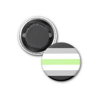 Agender Pride Flag Magnet