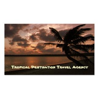 Agent de voyage cartes de visite personnelles