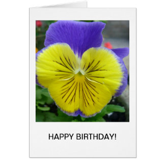 Aggelikis Blue and Yellow Pansy Card
