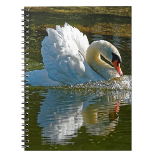Aggressive Beauty Spiral Notebook