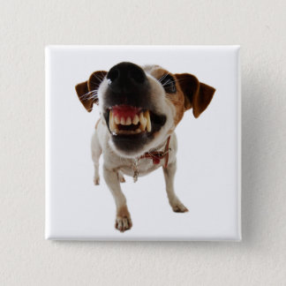 Aggressive dog - angry dog - funny dog 2 inch square button