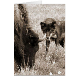 Aggressive wolf hunting bison card