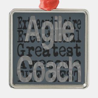 Agile Coach Extraordinaire Metal Ornament
