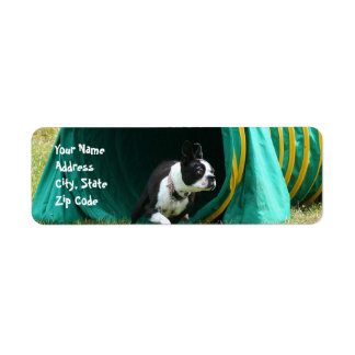 Agility Boston Terrier Address Labels